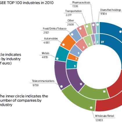 Breakdown of the SEE TOP 100 industries in 2010