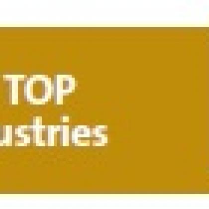 SEE Top 100 Industries