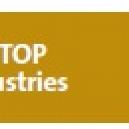 SEE Top Industries