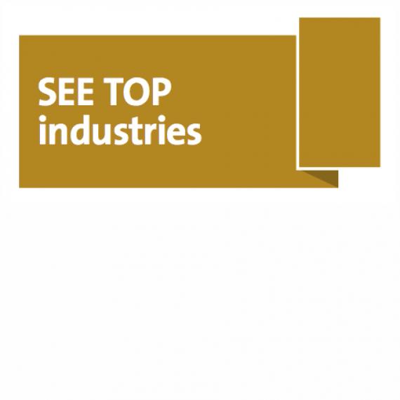 SEE Top Industries