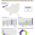 COVID-19 and SEE: the region's response to the crisis
